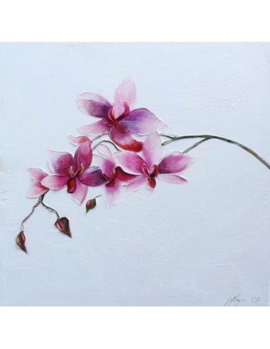 Obraz - Kvety orchidey